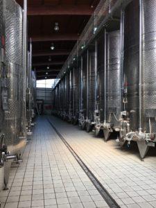 A day trip to Nemea Wine Region 1